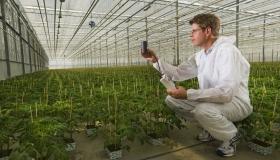 Steve Vanderkooy in Greenhouse